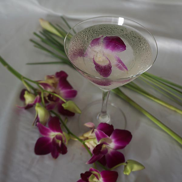 ee15bf533fb35 Diplomático Planas White Rum, Cointreau, Fresh Coconut Water, Tomoka Ginger  & Lemongrass Syrup, Frozen Orchid